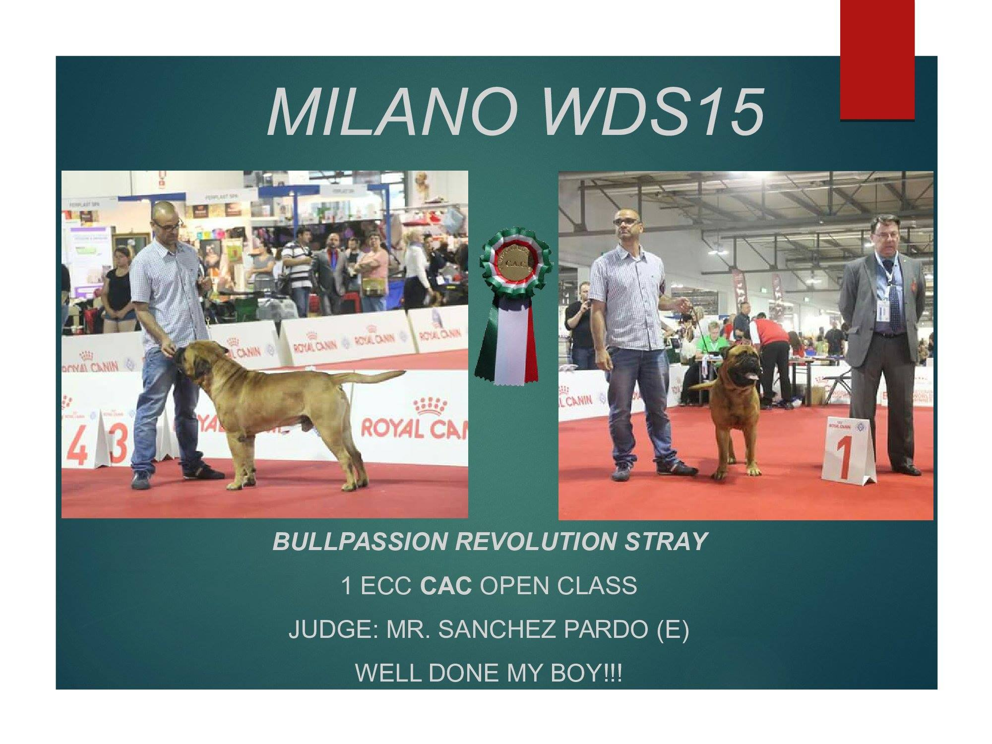World Dog Show Milano